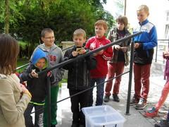 Galeria FŚNiT - wyjazd do Opola 12.05.2014
